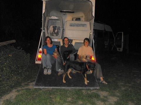 Nouvelles des chiens partis le 9 mai pour l'allemagne et l'autriche Dscf2721