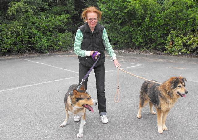 Nouvelles des chiens partis le 13 Mai pour les Pays Bas et l'Allemagne Dscf2724