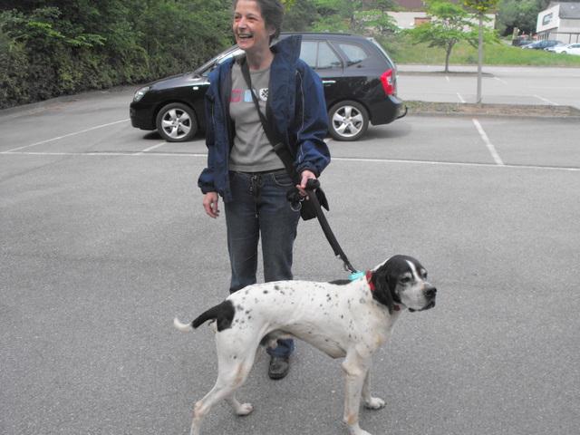Nouvelles des chiens partis le 13 Mai pour les Pays Bas et l'Allemagne Dscf2726