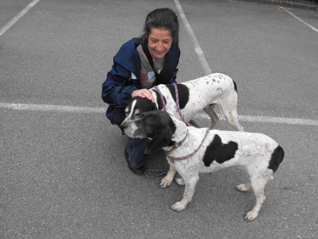 Nouvelles des chiens partis le 13 Mai pour les Pays Bas et l'Allemagne Dscf2728