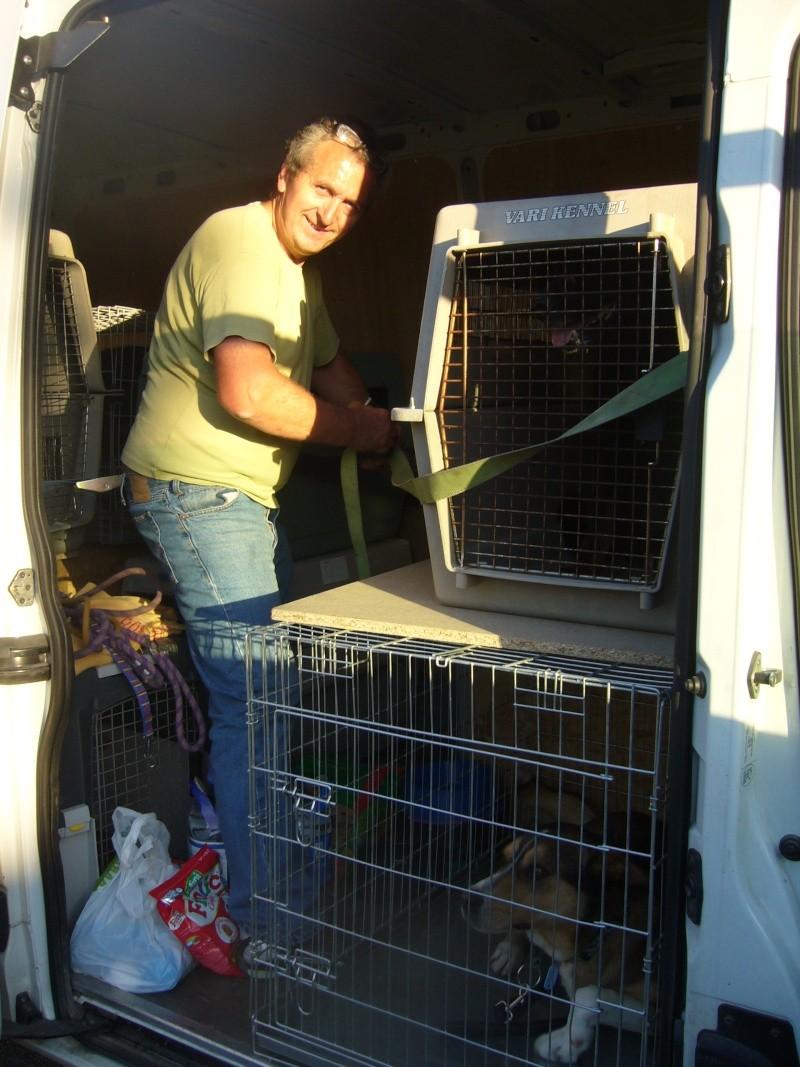 Nouvelles des chiens partis le 13 Mai pour les Pays Bas et l'Allemagne P1080512