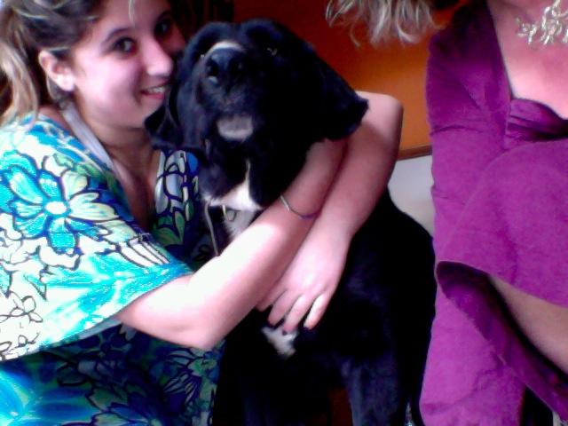 Wolf est en cours d'adoption !!!!!!!!!! Wolf adopté,puis avec son copain Doudou Photo_10