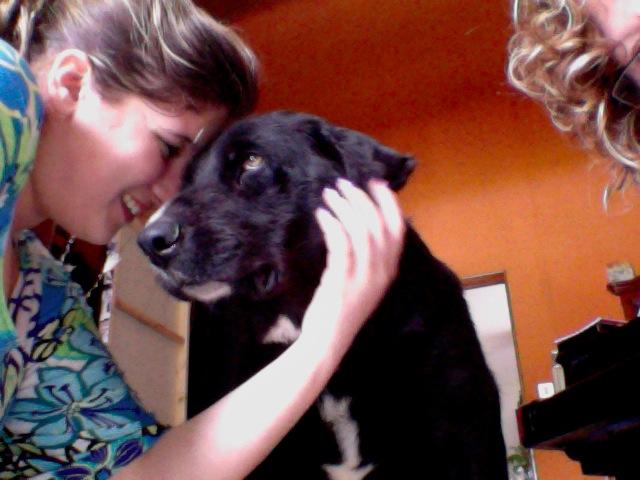 Wolf est en cours d'adoption !!!!!!!!!! Wolf adopté,puis avec son copain Doudou Photo_12