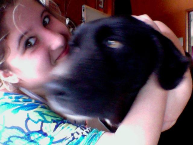 Wolf est en cours d'adoption !!!!!!!!!! Wolf adopté,puis avec son copain Doudou Photo_14