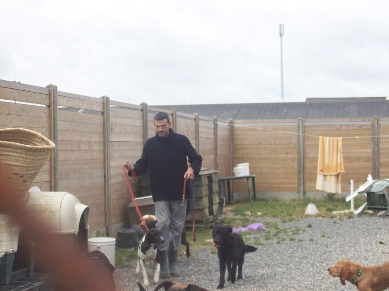 Nouvelles des chiens à Landerneau Photo_16
