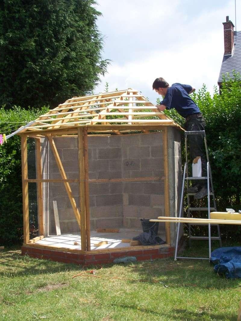 construction de notre voliere exterieur - Page 2 100_7911