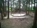 Les maisons néolithiques d'Auneau, le 25 mars 2011 - Page 2 Img00314