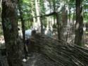 Les maisons néolithiques d'Auneau, le 25 mars 2011 - Page 2 P1150110