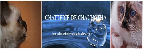Chatteries partenaires Bannir10