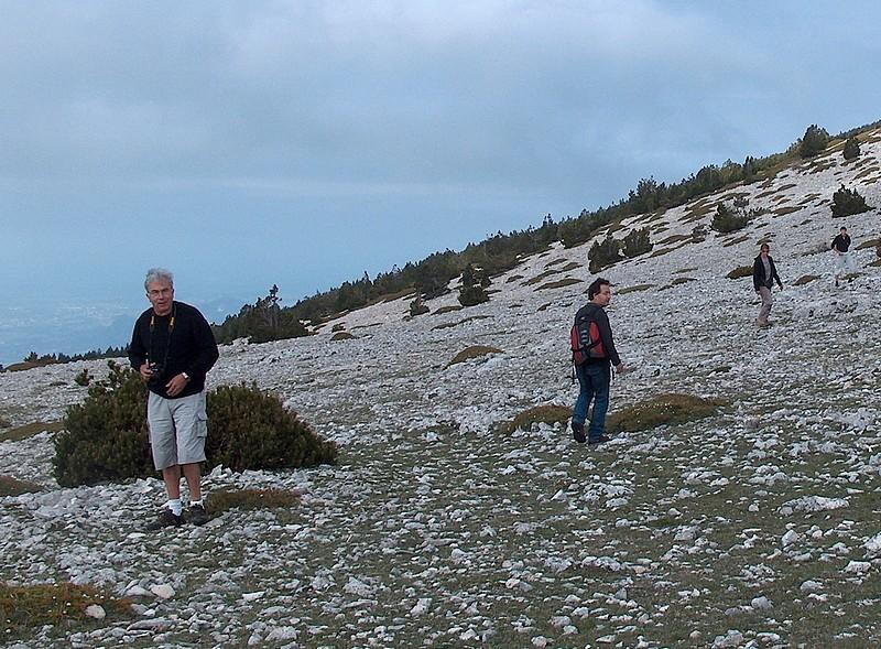 Davarrée au Mont Ventoux Hpim1710