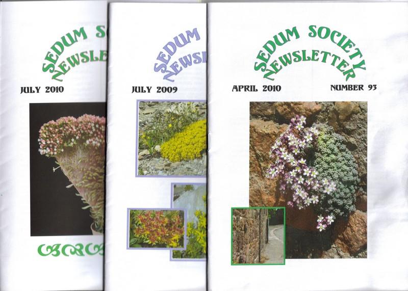 Un peu de pub : Sedum Society Lastsc10