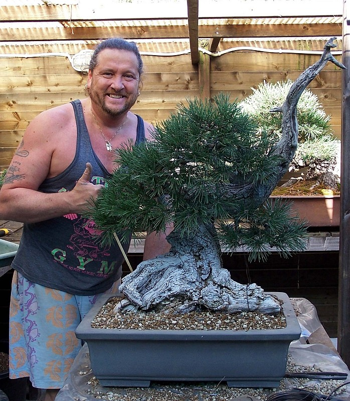 """LAST PICTURES OF MY MUGO PINE THE """"SWAN"""". - Page 2 30-8-212"""
