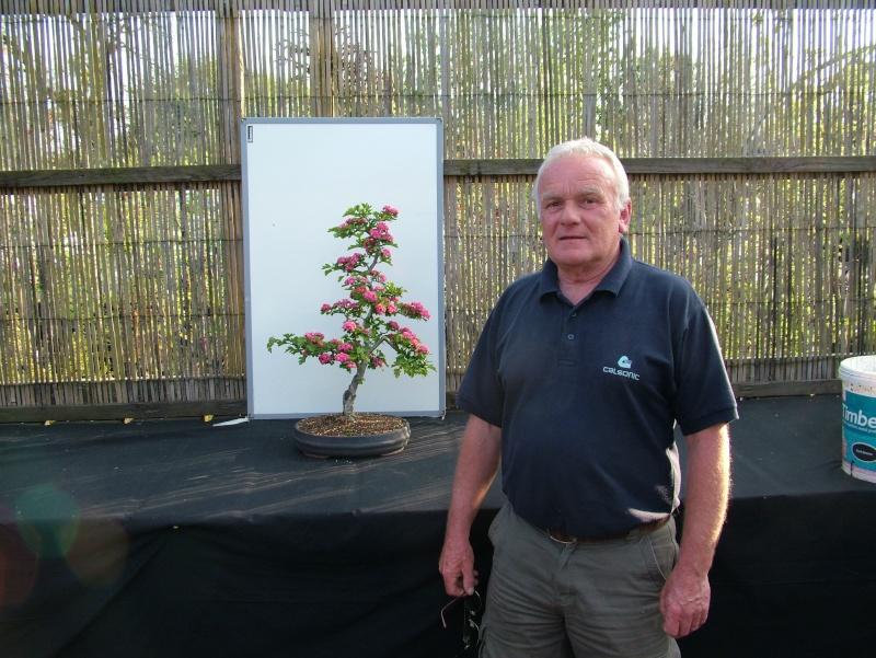 Red Thorn in flower Dscf5241