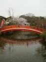 Sublimes mémoires du Japon - Page 3 285_le10