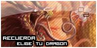 Dragon´s Battles - Portal Elige_10
