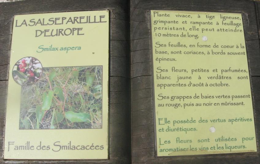 """D"""" ORANGE A LA COTE BLEUE NOUS A EN AVONS VU DE TOUTES LES COULEURS  - Page 2 Img_3313"""