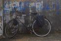 ancora una bici Ridime12