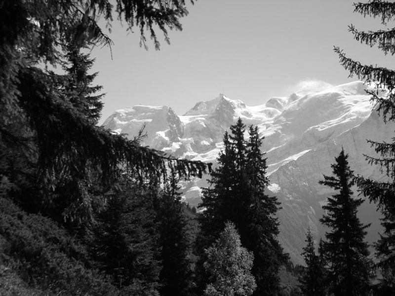 6R6 dans les Alpes Dsc02110