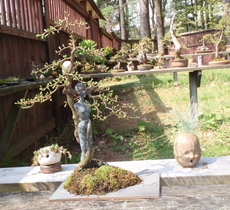 Spring in Nick Lenz's garden P5063317