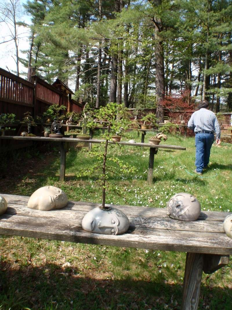 Spring in Nick Lenz's garden P5063339