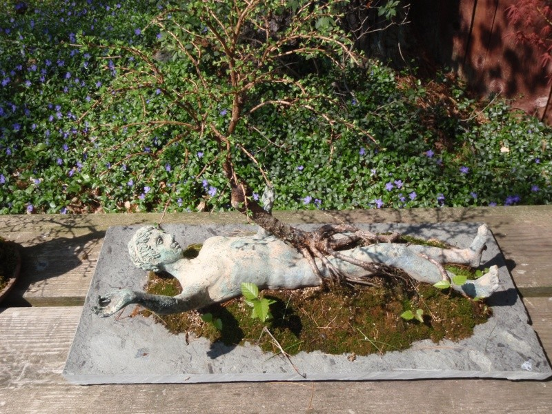 Spring in Nick Lenz's garden P5063341