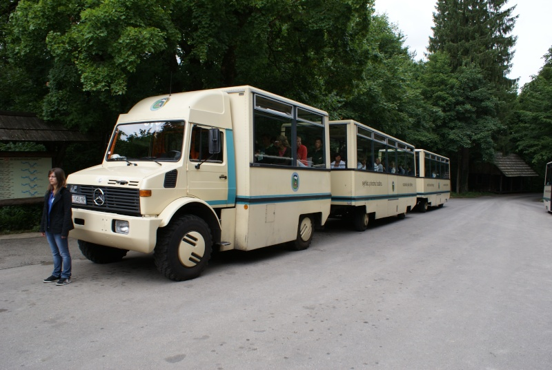 Rassemblement Camions et vide grenier à Mendig Allemagne Dsc02012
