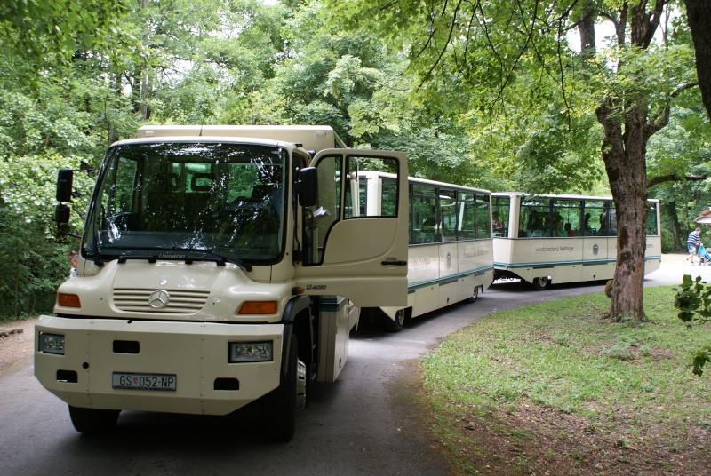 Rassemblement Camions et vide grenier à Mendig Allemagne Dsc02013