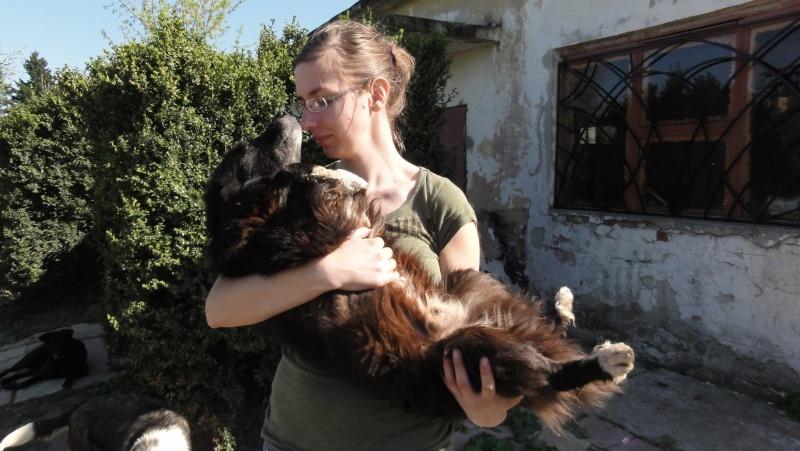 Spike, né en 2005, 7kg, très attaché à l'homme  Dsc01560