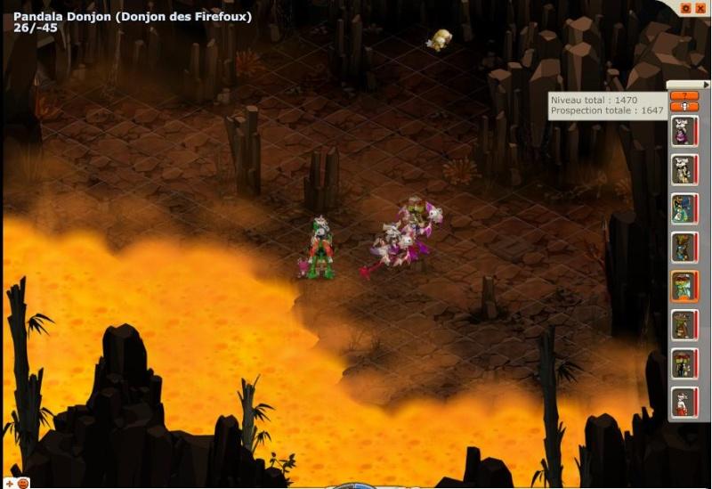 Donjon Firefoux (16.10.2010) Peki210
