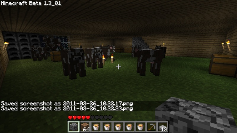 Play Minecraft - Page 4 2011-010