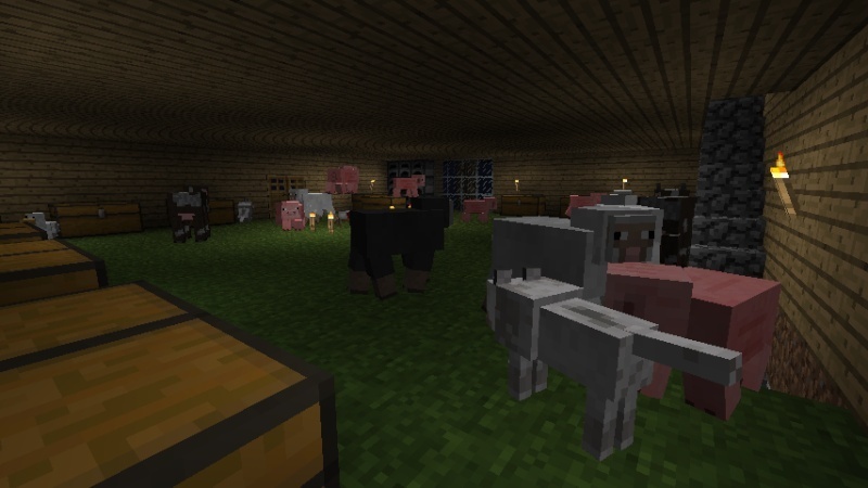 Play Minecraft - Page 4 2011-013