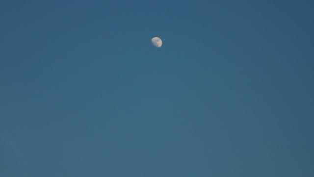Ce soir! Nouvelle éclipse de Lune! P1010811