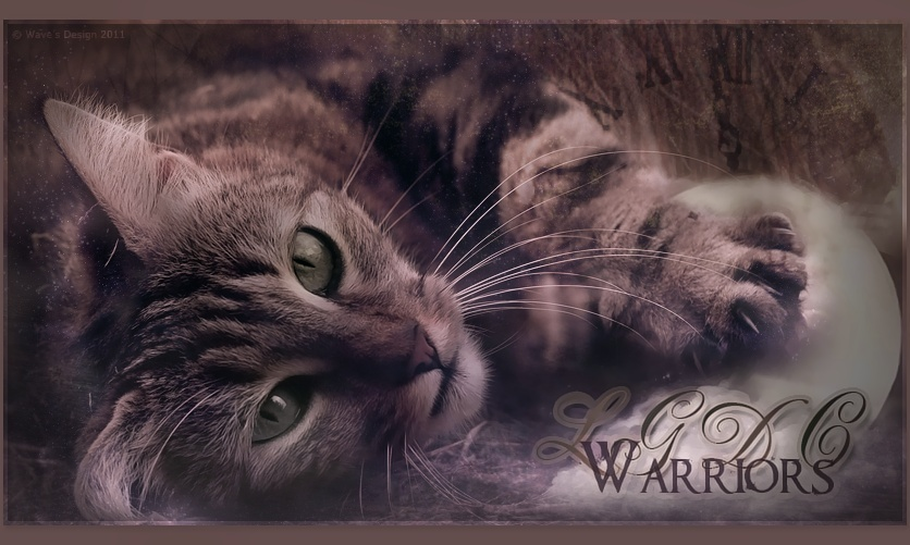 LGDC Warrior Lgdc_w10