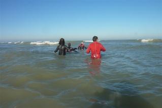 Ir a largo de la costa (Longe-Côte) P1020610