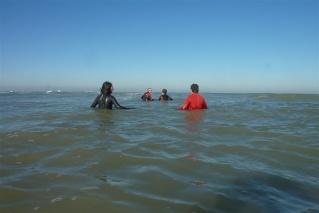 Ir a largo de la costa (Longe-Côte) P1020612