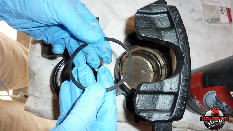 Maïté pistonne ses freins avant... (CJ7 82-86) P1050836