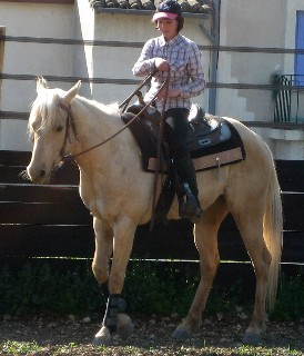 jument quarter palomino 4 ans  Time_r11