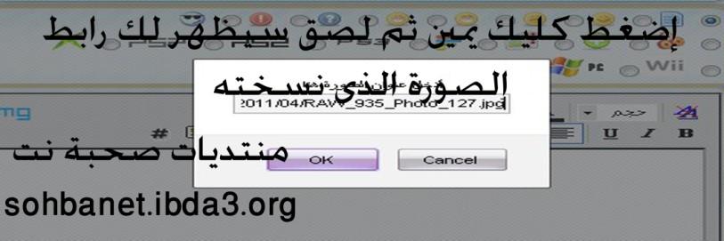 حصريا على صحبة نت شرح تنزيل الصور من موقع 2011wwe     1110