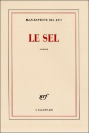 Jean-Baptiste Del Amo - Page 12 Sel-de10