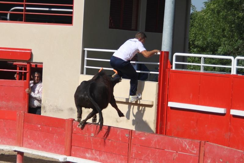 codognan course de vache emboullée de la manade blatiere avec l'ecole taurine Img_8011