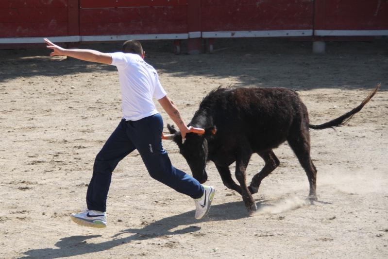 codognan course de vache emboullée de la manade blatiere avec l'ecole taurine Img_8310