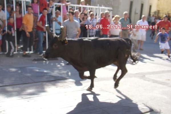17..06..2011..Festival ST.Mamert du gard Dsc00510