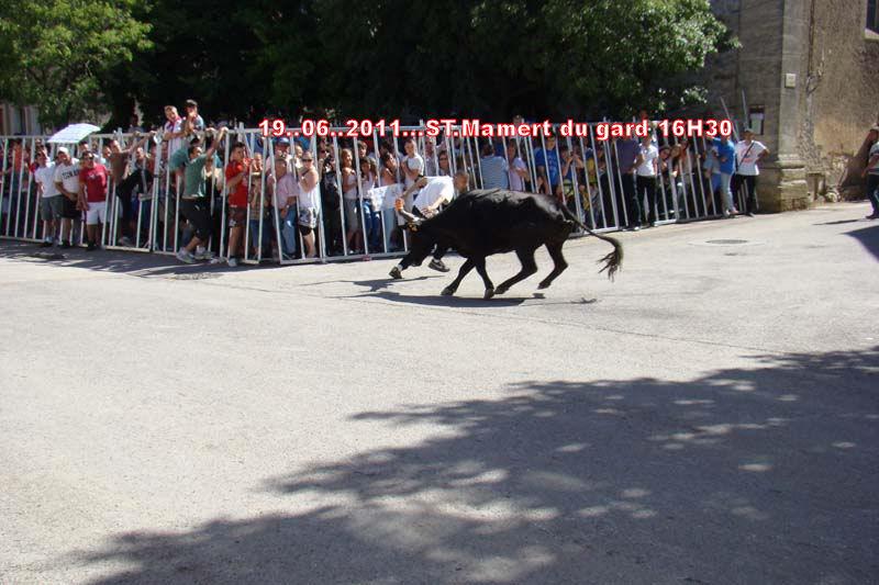 17..06..2011..Festival ST.Mamert du gard Dsc00612