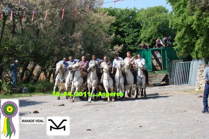30...04...2011...ASPERES  ABRIVADE Dsc09113