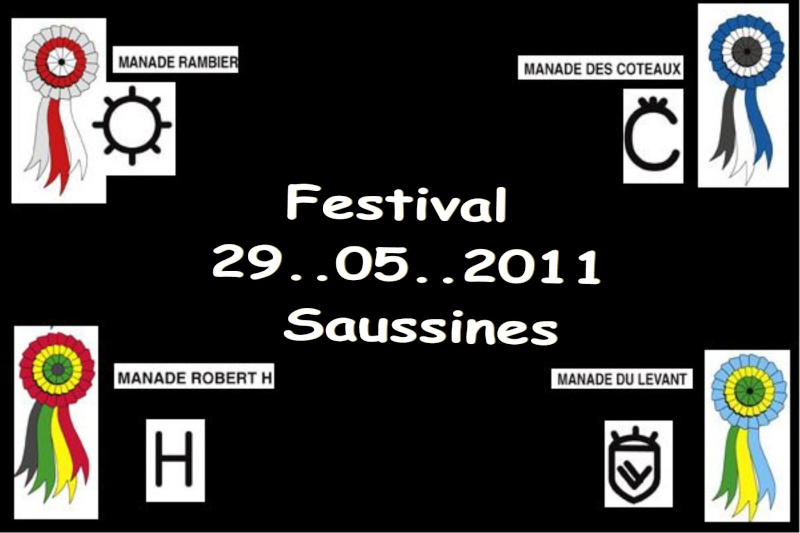 26...05...2011...Sausssines Festiv10