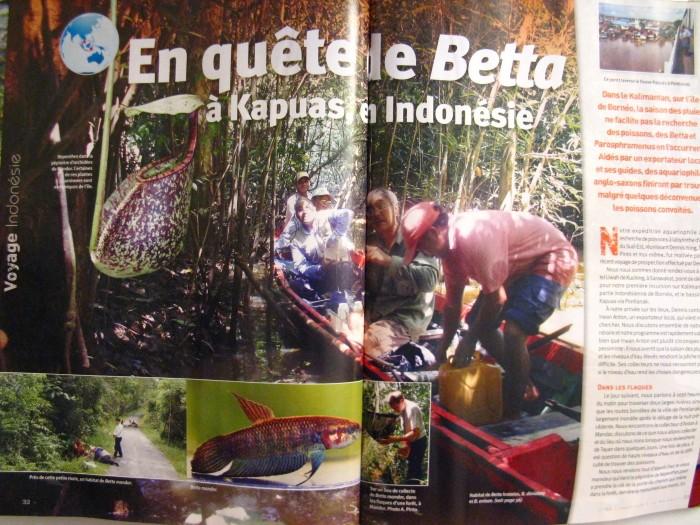 Magazine L'AQUARIUM : 2 sujets + divers sur Bettas Img_3110