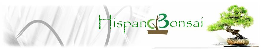 HISPANOBONSAI.NET - EL PORTAL PARA LOS AMANTES DEL BONSAI