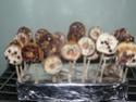 Donuts et autres beignets - Page 5 P1040611