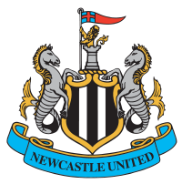 Newcastle United Squad 200px-19