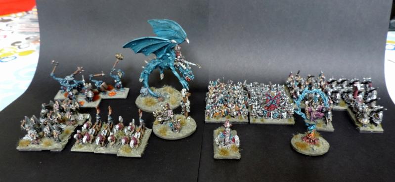 Armée du chaos Dscn4825